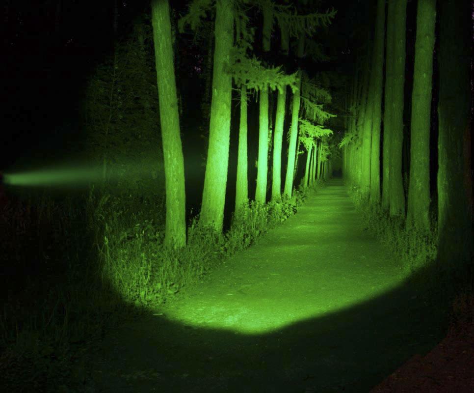 зеленый свет фото